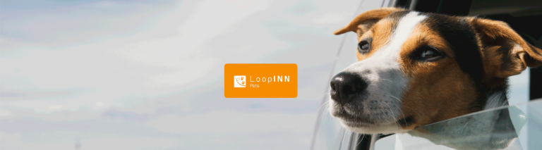 Admisión de mascotas en The Loop Inn